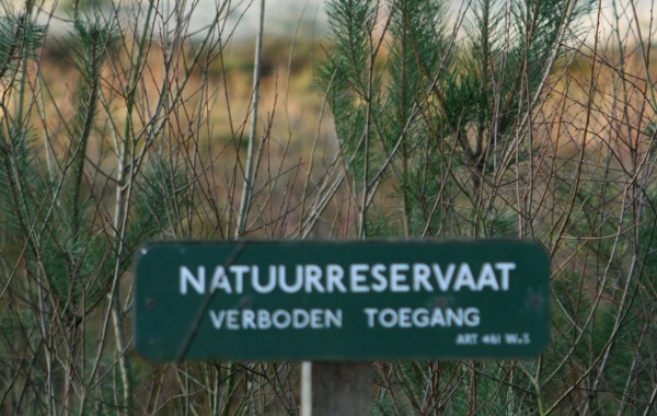 Midden in de natuur